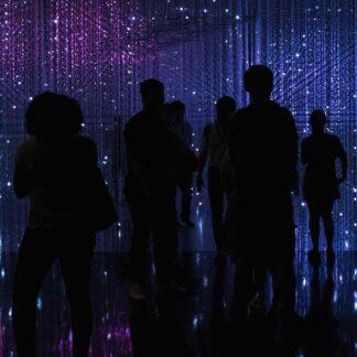 silhuetter av människor som står framför en lila bakgrund